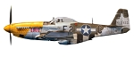 P-51D Mustang Theatre Lou IV  63