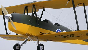 "Tiger Moth 50"" Wingspan ARF ((2 Wood))"