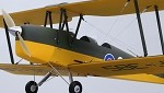 "Tiger Moth 50"" Wingspan (Plug N Play)"